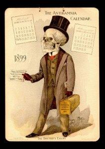 Anatomy calendar