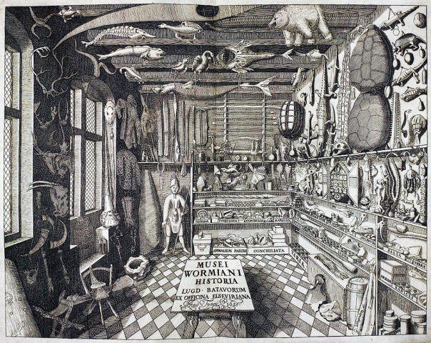 ole-wormium-museum