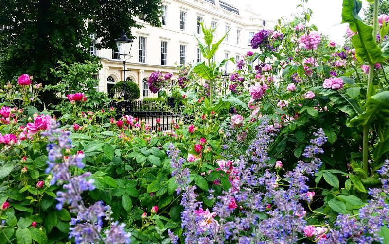 Garden of the Royal College of Physicians ix (c) Discover Medical London