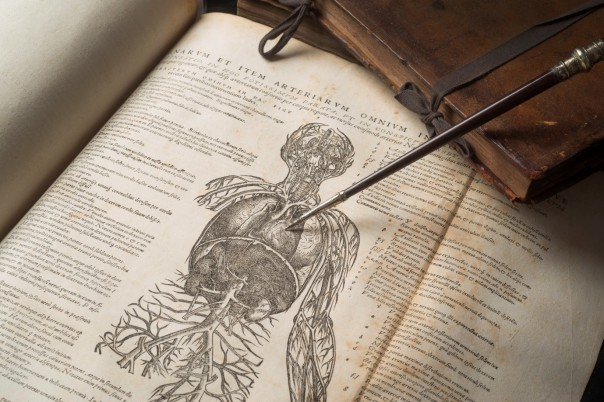 Andreas Vesalius_s De humani corporis fabrica ii, 1543, with William Harvey's demonsration rod, photograph by John Chase (c) Royal College of Physicians